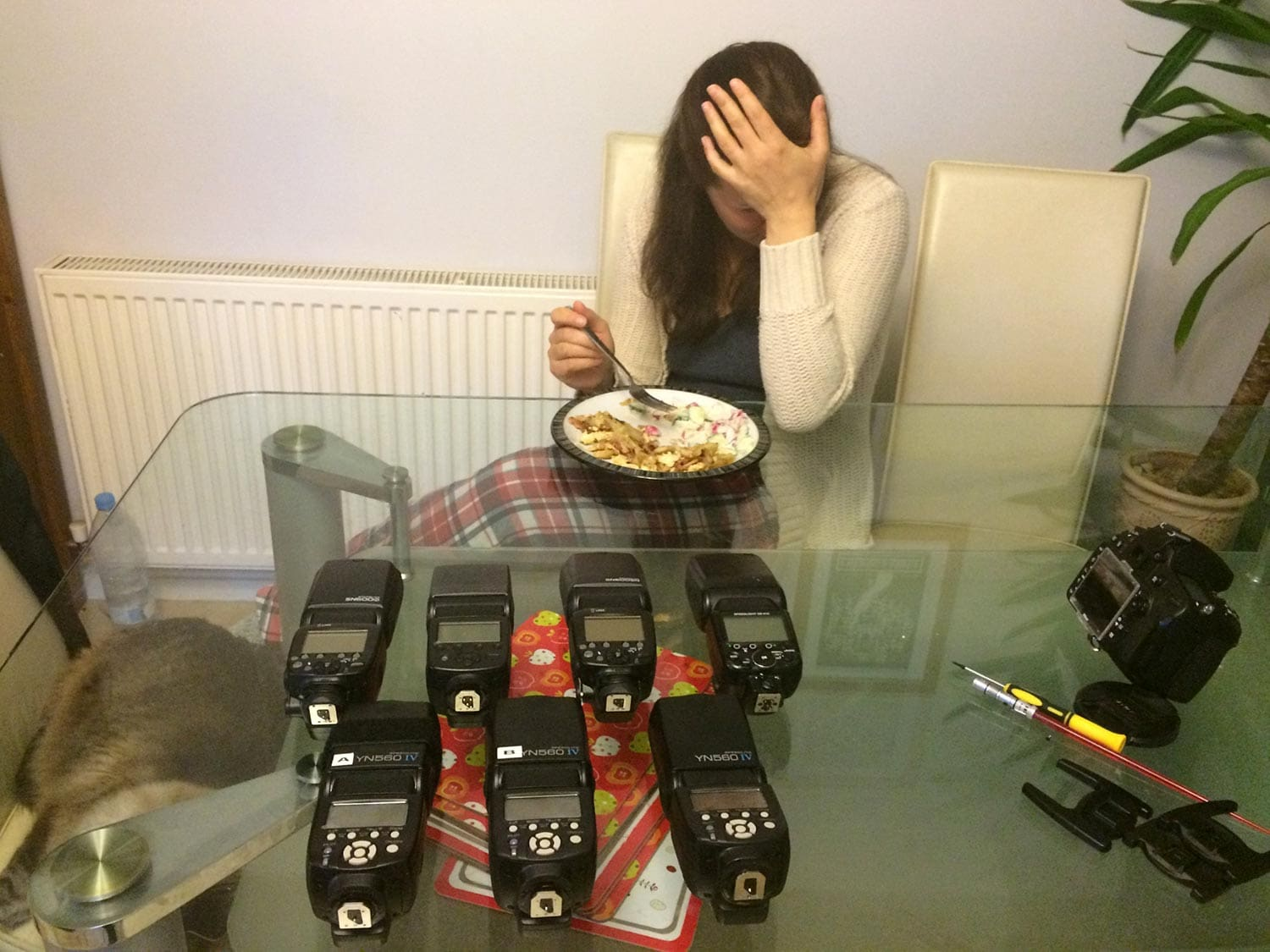 My wife's reaction to me wanting to buy more flashes